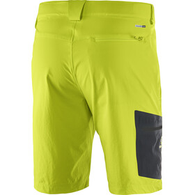 Salomon Wayfarer Shorts Men Regular lime punch